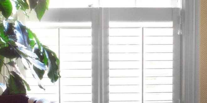 What Window Treatments Work Best in Humid Places?